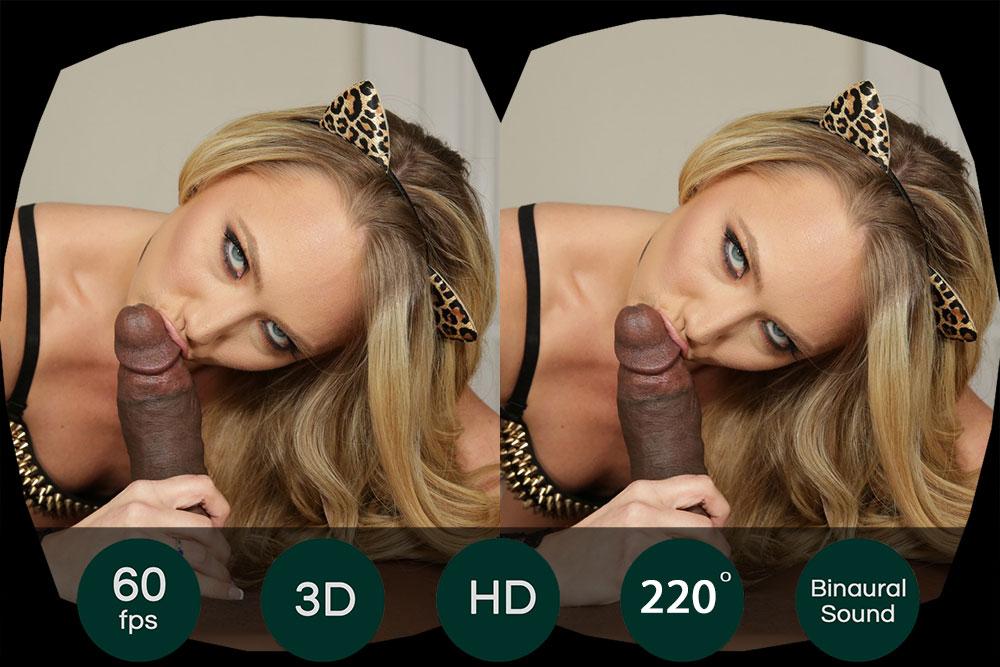 La GFE Collection: Hungry Kitty Films Pornos Réalité Virtuelle